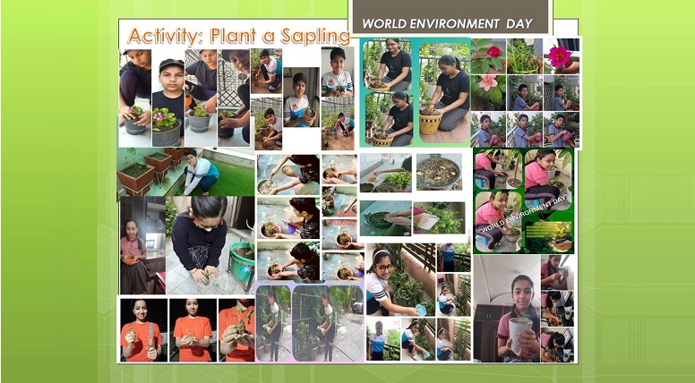 Grade VI-X Students participated in World Environment Day activities